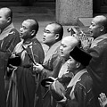 Monks Chanting - Jing'an Temple Shanghai by Christine Till