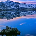 Mono Lake Twilight by Inge Johnsson