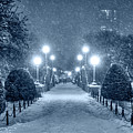 Monochrome Blue Nights Boston Public Garden Snow Storm Ma Massachusetts Bridge Lights by Toby McGuire