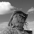 Monochrome Scarecrow by Robert Wilder Jr