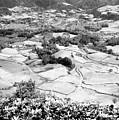 Monochrome Valley by Gaspar Avila