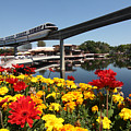 Monorail At Disney's Epcot by Carl Purcell