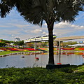 Monorail At Epcot by Denise Mazzocco