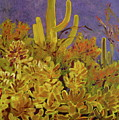 Monsoon Glow by Julie Todd-Cundiff