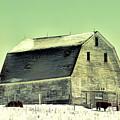 Monster Barn by William Tasker
