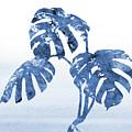 Monstera Leaf-blue by Erzebet S