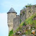Mont St Michel Hillside View by Vicki Hone Smith