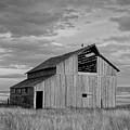 Montana Barn Memories by Lindy Pollard