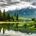 Montana Beauty by Jesse Orrico
