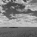 Montana, Big Sky Country by Scott Slone