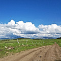 Montana Dirt Roads 1 by Susan Kinney