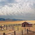 Montana Farmyard by Grant Groberg