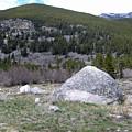 Montana by Janis Beauchamp