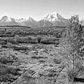 Montana Mountainscape by Lindy Pollard