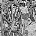 Montana Old Wagon Wheels Monochrome by Jennie Marie Schell