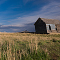 Montana Prairie Homestead by Ward Thurman