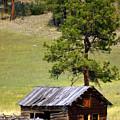 Montana Ranch 2 by Marty Koch