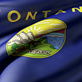 Montana State Flag by Enrique Ramos Lopez