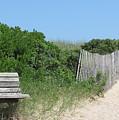 Montauk Beach by Rose Hart