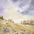 Montauk Sand Dune by Tony Scarmato