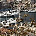 Monte Carlo 10 by Andrew Fare