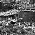 Monte Carlo 10b by Andrew Fare