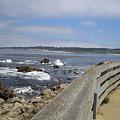 Monterey Beach Rail California Usa by John Shiron