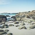Monterey Coastline by Margaret Pitcher