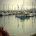 Monterey Marina II by Joyce Dickens