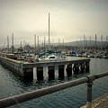 Monterey Marina by Joyce Dickens
