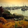 Monterey Marina Vista by Joyce Dickens