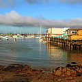 Monterey Wharf by Janine Moore