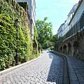 Montmarte Paris Cobblestone Streets by Carol Ailles