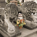 Montparnasse Cemetery by Mick Burkey