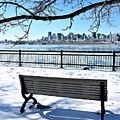 Montreal - Winter Cityscape by Cristina Stefan