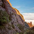 Montserrat Hike Painterly by Joan Carroll