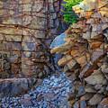 Monument Cove II by Rick Berk