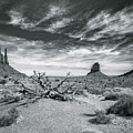 Monument Valley by Lou Novick