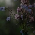 Moody Bouquet by Bonnie Bruno
