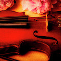 Moody Violin With Peonies by Garry Gay
