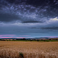 Moody Wheat Field Sunset by Framing Places