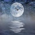 Moon And Sea by Cathy Kovarik
