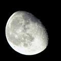 Moon by Denise Keegan Frawley