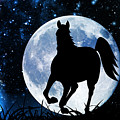 Moon Horse by Larah McElroy