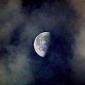 Moon In The Mist by Mitch Caueffield
