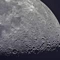 Moon by JoAnn McDonald
