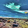 Moon Lit Beach, Bray, Wicklow, Ireland, Poster Effect1b by Zsuzsanna Szabo