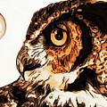 Moon Owl by Anthony Djordjevic