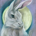 Moon Rabbit by MM Anderson