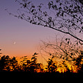 Moon Rising by Gary Adkins